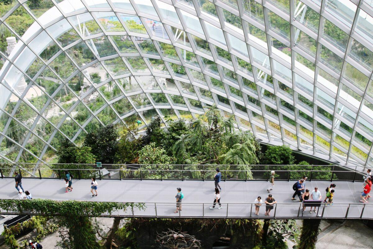 parc d'orchidées Singapour